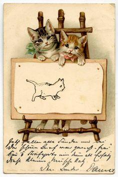 Héléna Maguire chat cat katze gatto