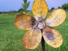 Flower stake outside garden or yard decor rustic by gardenstake, $15.00