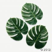 Palm Leaves; $8.50 For tropical room