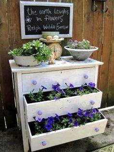 garden junk, flowering plants, flea market finds, flea markets, flea market gardening, dresser drawers