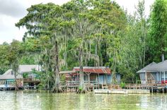 Awesome fishing camps. Someday I'll own one on the atchafalaya basin.