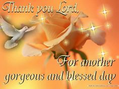 Thank you Lord for another beautiful day to share you with someone else...to bask in your glory & praise your Holy name Jesus...