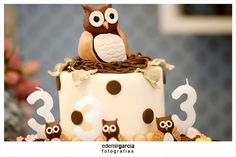Owl Themed Birthday Party For Triplets!, Kara's Party Ideas