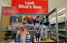 From toys to treats, beds to bowls, Tuesday Morning has a wide selection of pet items that are easy on the budget. #tuesdaymorning