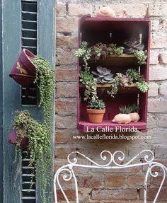 mini garden com suculentas... fica lindo em qualquer lugar !!! mais idéias no blog  www.lacalleflorida.blogspot.com