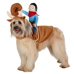 Stick this cowboy costume on a bigger dog, and we guarantee trick-or-treaters will do a double-take when they spot him.