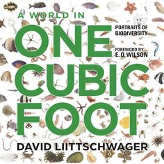 Help someone appreciate even the smallest things in life with this #book on micro #biodiversity. #giftideas