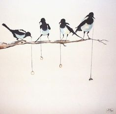 magpies in acrylic