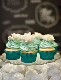 Pale mint green frosted cupcakes...look blue to me..