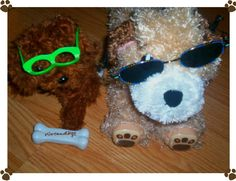 """My kids have been putting glasses on their """"pet dogs"""" for a long time!  Meet my son's nearsighted canines  Lucky and I forget the other ones name!  #arloneedsglasses"""