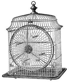 Antique Clip Art - Cute Wire Birdcage - The Graphics Fairy