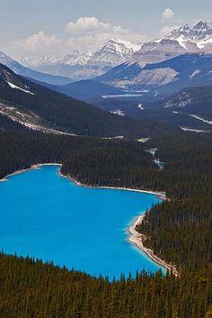 Peyto Lake – Banff National Park – Alberta – Canada