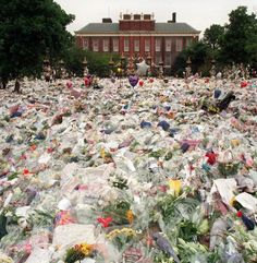 Floral Tributes For Diana: Floral tributes and balloons laid in the gardens of Kensington Palace after the death of Princess Diana, Princess of Wales, 31st August 1997. (Photo by Jayne Fincher/Getty Images) histori, royal famili, princesses, princess diana funeral, princess dianaroy