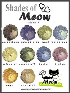Shades of Meow