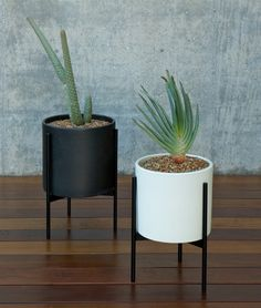 Modernica Case Study Cylinder Plant Pot with Metal Stand
