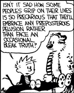 Calvin and Hobbes on Life and the Universe