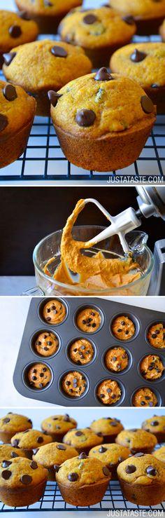 The Best Pumpkin Chocolate Chip Muffins #recipe