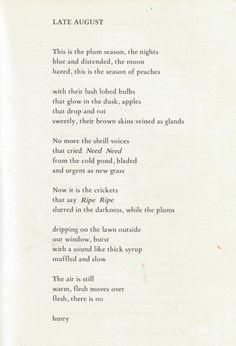 margaret atwood, write, inspir, beauti, word