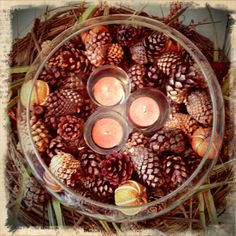 Thanksgiving decor, DIY with Candle Impressions flameless votives. Would love to see some cranberries or interspersed gold and/or glitter pine cones to jazz it up a bit! white candl, pine cone, thanksgiv centerpiec, thanksgiving centerpieces, holiday idea, thanksgiving decorations diy, simpl candl