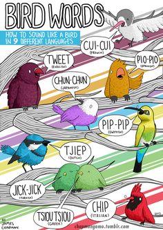 Bird words in 9 languages.