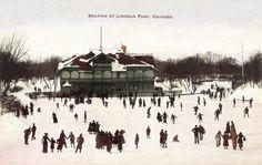 vintage postcards, lincoln park, ice skate, chicago illinoi, antiqu postcard, skate vintag, ice skating, chicago pin, chicago vintag