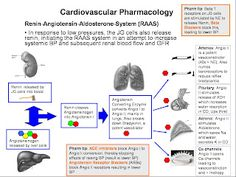 NCLEX Review: Cardiovascular Drugs Made EZ: Part 1