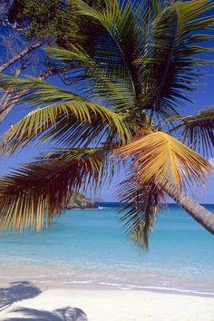 Trunk Bay, St John, US Virgin Islands