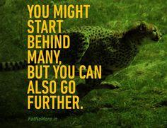 Cheetah quotes - photo#27