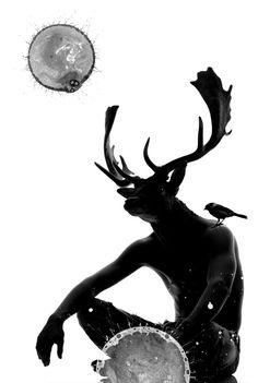 Gary Swindell - Wildlife Design & Art Direction - Aimizm