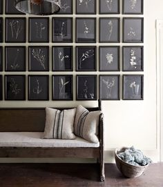 Love the botanicals with a black ground and how they are hung in a massive grid. Striking.