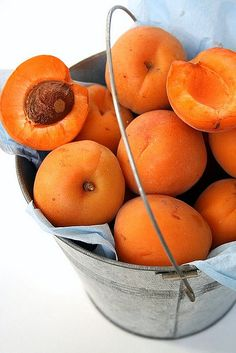Summer ~ Apricots just picked and still warm from the sun  ♥