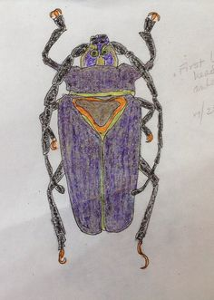 Crayola art- love the furry effect crayon gives to the legs