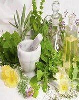 Master Herbalist Training