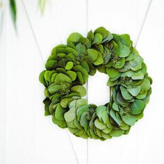 Eucalyptus's lovely fragrance and sculptural elegance makes for a chic wreath.