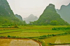 From a bike ride in Yangshuo, China