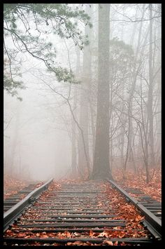 Love photographs of railroad tracks