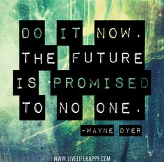 Do it now. The future is promised to no one. -Wayne Dyer