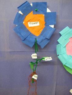 Paper plate flower craft for Kindergarten.
