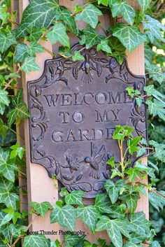 Welcome to My Garden