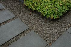 Rectangular pavers - gravel & border...