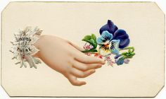 victorian calling card designs | Here is a Victorian calling card that includes an illustration of a ...