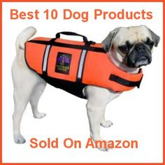 10 Best Products For Your Dog Sold On Amazon...great and handy list of what to buy.