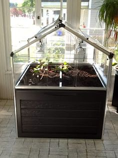 My Latest Hair Brained Idea! Growing Greens and Herbs in a Greenhouse on My Porch Through a Wisconsin Winter! Will it work?