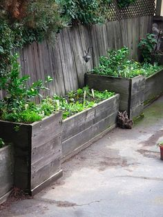 great wooden garden container idea. I already have most of this...gonna make the tall ones next