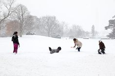 """The First Lady, Malia and Sasha were outside in the midst of the snowstorm playing with the family dog, Bo."" (Official White House photo by Pete Souza)"