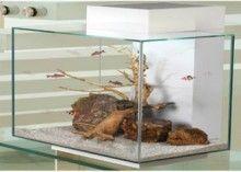 aquaria, fish tank, 23l white, fluval edg, aquariums