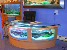 100 Gallon Aquarium desk. Either for work or a home office.