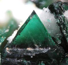 Anatacamite  La Vendida Mine, Caracoles, Chile  fov 0.8 mm