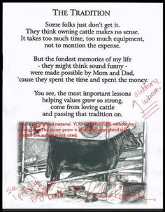 Show cattle love
