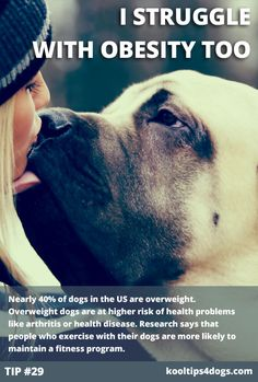 Nearly 40% of dogs in the US are overweight. Overweight dogs are at higher risk of health problems like arthritis or health disease. Research says that people who exercise with their dogs are more likely to maintain a fitness program.